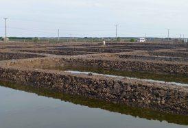 AquacultureResearchPonds_CTU_318