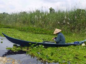 Fisherman_UMinh_NP_910