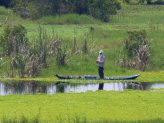 Fisherman_UMinh_NP_935