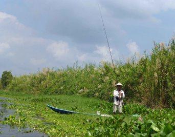 Fisherman_UMinh_NP_962