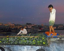 Men&Fruit_623