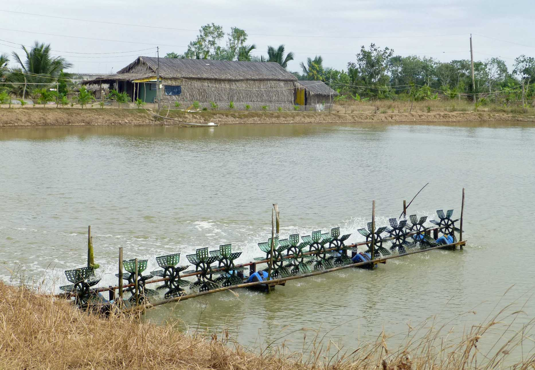 12   January   2014   Deep in the Delta: Stories from Vietnam