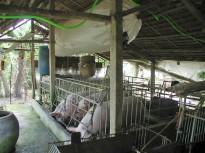 VACB Farm