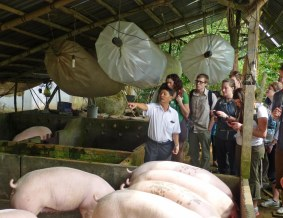 309_DrChiem&MethaneBags&Pigs_400