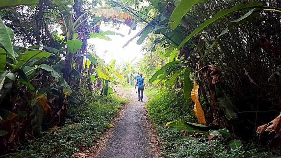 walking_cia