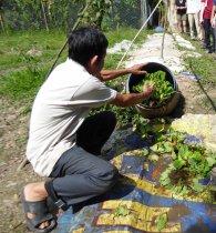 Mr Thanh loading biogas digester 267