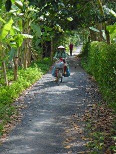 Woman Biking on Path 352